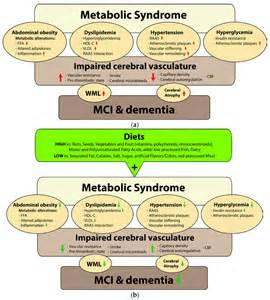 Insulin Resistance and Metabolic Syndrome