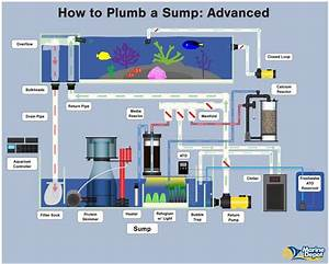 How To Plumb A Sump