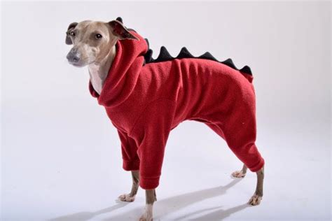 dinosaur onesie  italian greyhounds  lokopetapparel