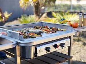 Grand Barbecue Electrique : comment choisir sa plancha conseils d taill s et ~ Melissatoandfro.com Idées de Décoration