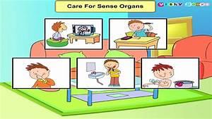 Care For Sense Organs