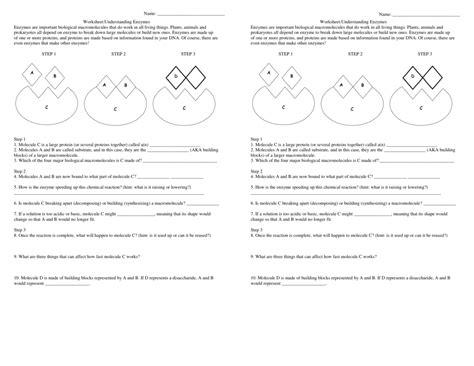 Understanding Enzyme Worksheet High School Understanding Best Free Printable Worksheets