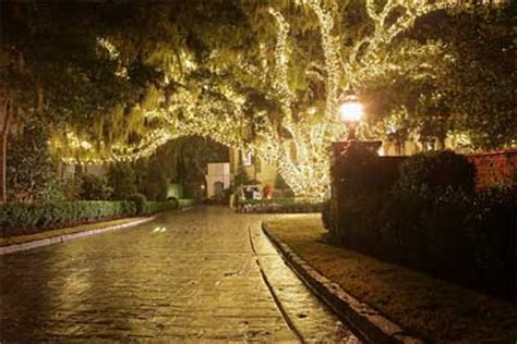garden lighting can turn any outdoor space to an envied