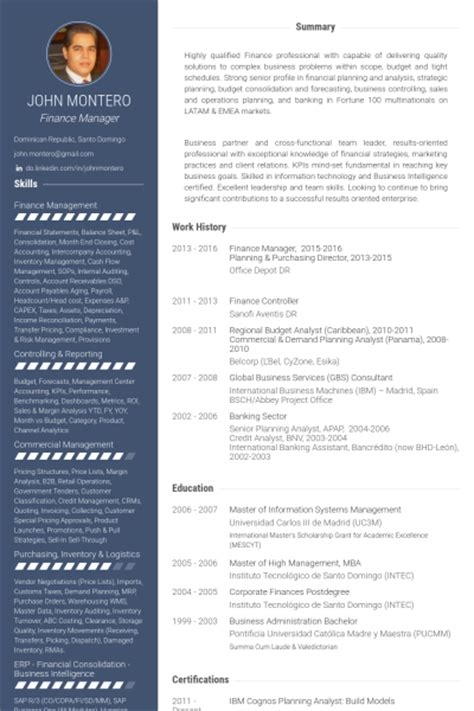 Vp Information Technology Resume by Professional Resume Financial Controller