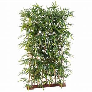 Bambou Pour Haie Brise Vue : haie brise vue pas cher prix achat vente en ligne ~ Premium-room.com Idées de Décoration