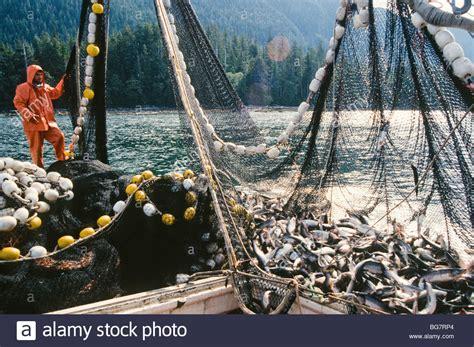 Fishing Boat Deckhand by Alaska Southeast Deckhand On A Salmon Fishing Boat