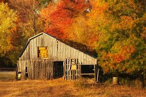 The Beauty Of An Old Barn