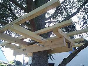 Comment Faire Une Cabane Dans Les Arbres : les diff rents modes de support d une cabane perch e ~ Melissatoandfro.com Idées de Décoration