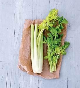 Culture Celeri Branche : c leri branche comment le cuisiner et le pr parer ~ Melissatoandfro.com Idées de Décoration