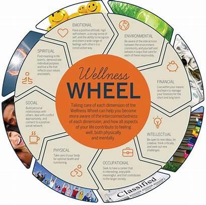 Wellness Wheel Health Plan Unh Students Self