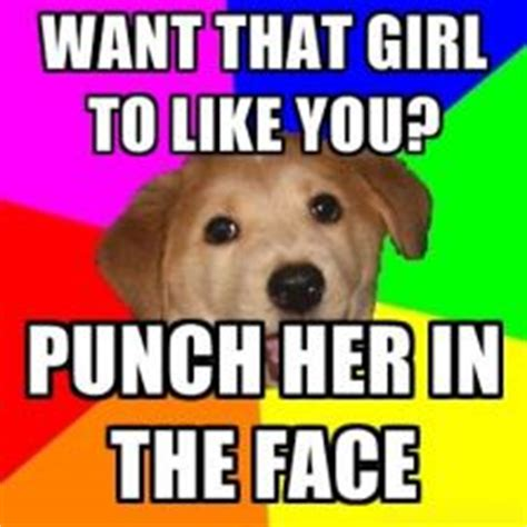 Advice Dog Meme - advice dog hilarious pictures with captions