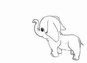 Uncolored Pictures Of Animals Pictures Of Nnature
