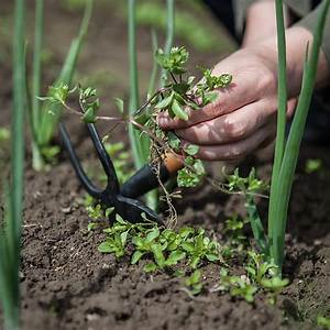 Unkraut Auf Gehwegen Dauerhaft Entfernen : unkraut vernichten bildtitel kill weeds step with unkraut ~ Michelbontemps.com Haus und Dekorationen