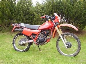 Honda Xl 125 : honda xl125v varadero review and photos ~ Medecine-chirurgie-esthetiques.com Avis de Voitures