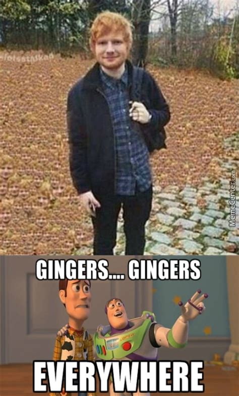 Autumn Memes - autumn memes best collection of funny autumn pictures
