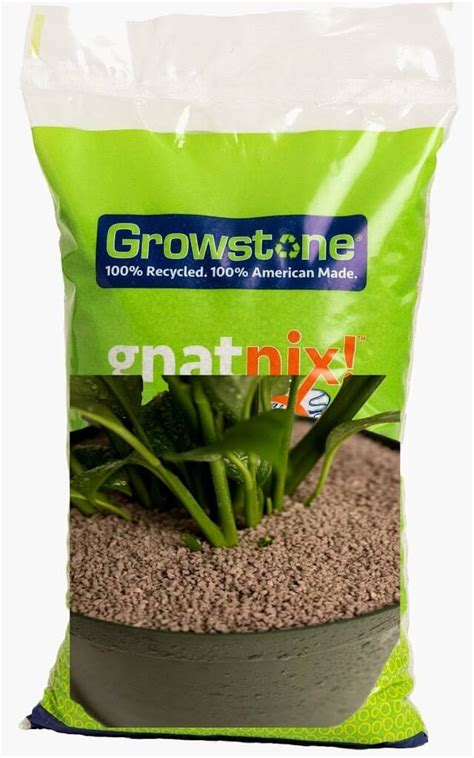 gnats in houseplants best natural fungus gnat killer in potting soil how to get rid of gnat