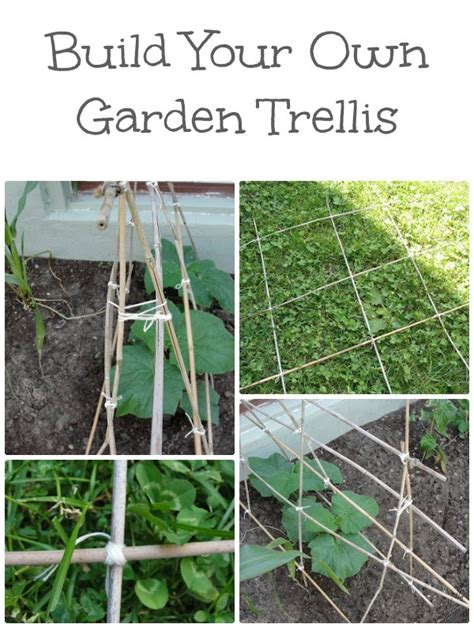 build your garden diy garden trellis