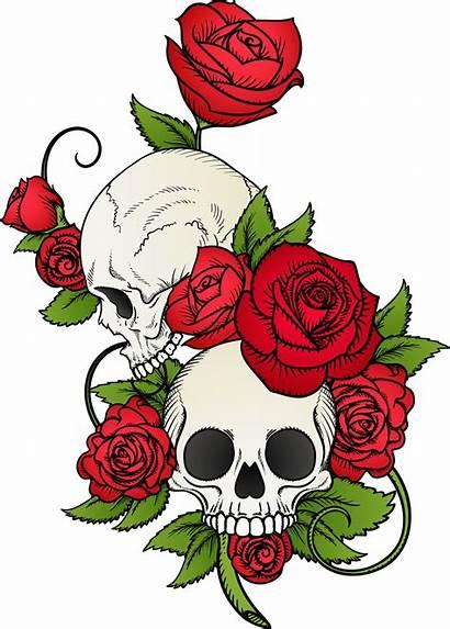 Skull Tattoo Rose Drawing Skulls Vector Flowers