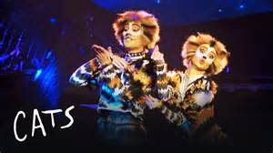 cats musical mungojerrie and rumpelteazer cats the musical
