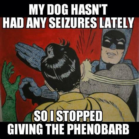 Vet Tech Memes - 119 best images about veterinary nursing jokes on pinterest cartoon veterinary technician and