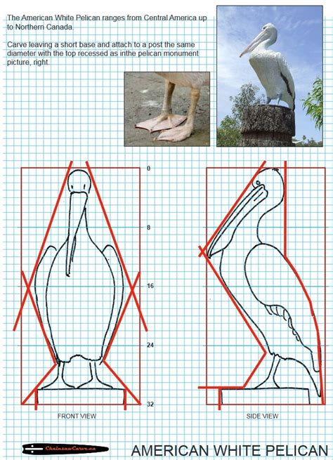 bird wood carving patterns woodworking projects plans