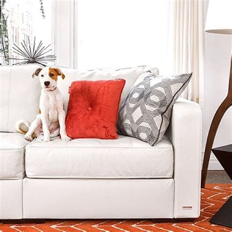 Lovesac Owner by 64 Best Lovesac Images On Sofas Bean Bag And