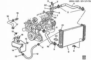 25535149 - Hose  Engine Coolant By