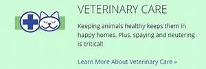 Open Admission Animal Adoption Shelter