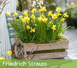 Gap Photos Specialising Garden Plant Photography