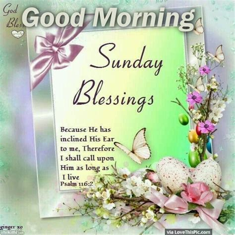 Blessed Sunday Morning Images Sunday Blessings For You Morning Pictures Photos