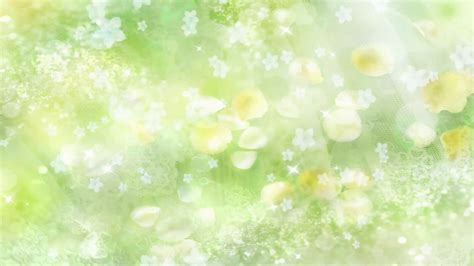 Green Background Images Green Flower Background 46 Images