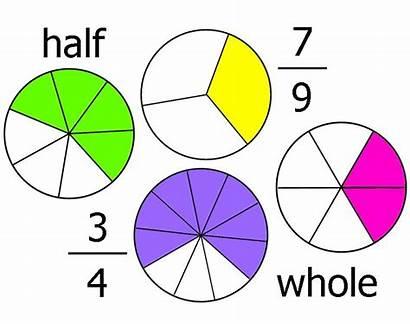 Fractions Math Grade 5th Unit Decimals Percents