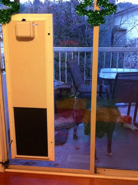 electronic patio pet door my just went through my sliding glass patio door