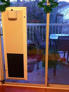 Solo automatic dog doorslarge size dog door indoor dog for Dog doors for sale
