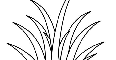 Coloring Grass by White Grass Clipart Clipground
