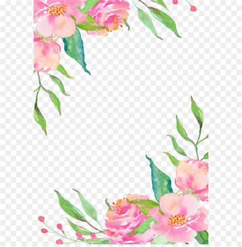 pink flower borders  transprent png