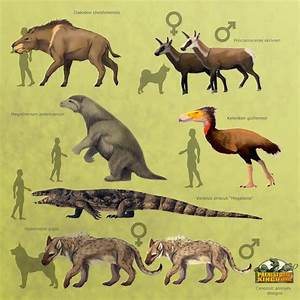 Prehistoric Kingdom | Official Blog for Prehistoric ...