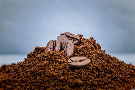 First, use them to wake up in the morning. Waste Coffee Grounds Make Biodiesel Fuel | Vournas Coffee Trading
