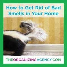How To Clean Body Odor From A Pillowtop Mattress Home