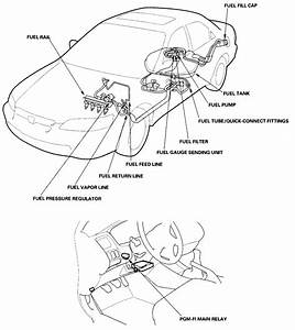 1999 Honda Accord Lx Wiring Diagram
