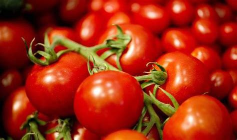 top   facts  trivia  tomatoes top  facts