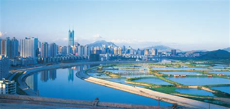 How innovation helps large cities like Shenzhen face the ...