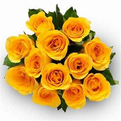 Yellow Roses Bunch Flowers Bouquet Flower Gift