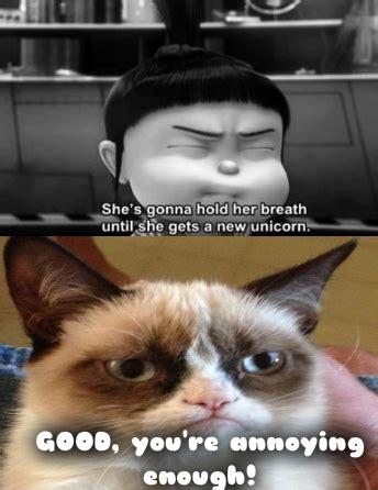 grumpy cat memes  kids google search mohrs stuff
