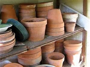 Pots En Terre Cuite Conseils D39entretien
