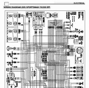 2005 Polaris Sportsman 700 Efi  U0026 800 Efi Wiring Diagram - Polaris Atv