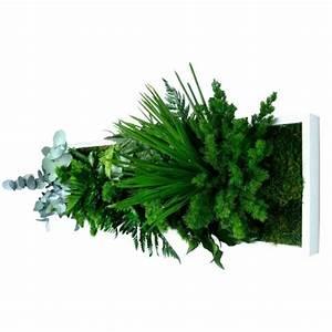 Tableau Végétal Mural : tableau v g tal stabilis sans entretien cadre plantes ~ Premium-room.com Idées de Décoration