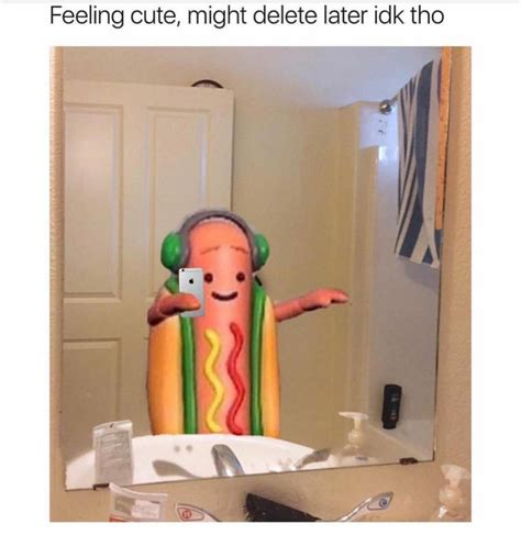 Dancing Dog Meme - how to use the snapchat hot dog business insider