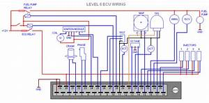 Cosworth L6 Ecu Circuit Diagram - Passionford