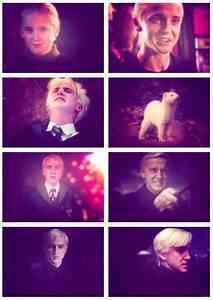 Draco Malfoy Evolution